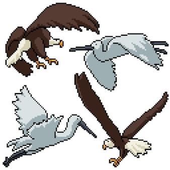 Pixel art set isolato eagle egret battenti