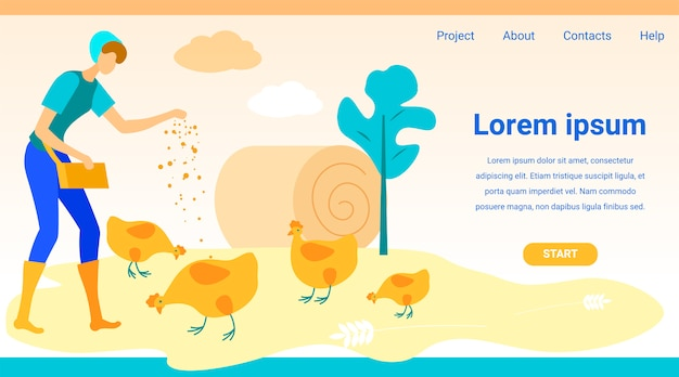 Polli d'alimentazione della donna. schermo del monitor del sito web.