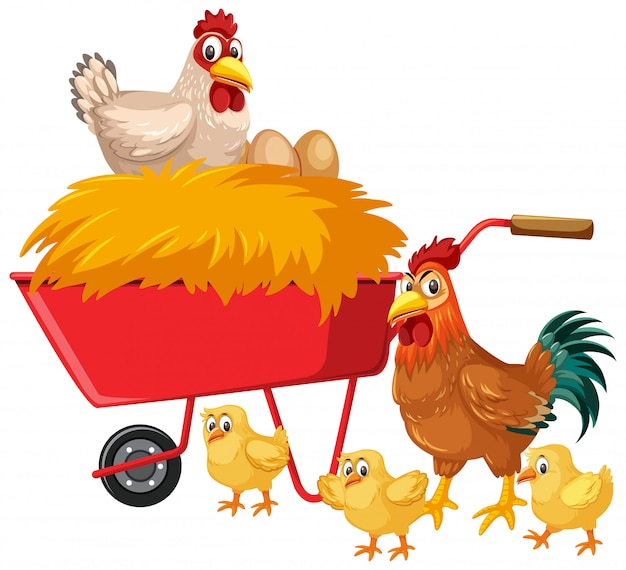 Polli e fieno sul vagone rosso su fondo bianco