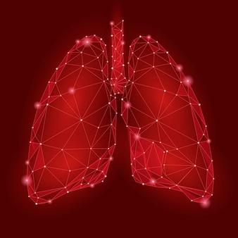 Polmoni interni dell'organo umano. tecnologia low poly