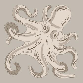 Polpo disegnato a mano di disegno realistico