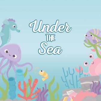 Polpo granchio cavalluccio marino gamberetti vita barriera corallina sotto il mare