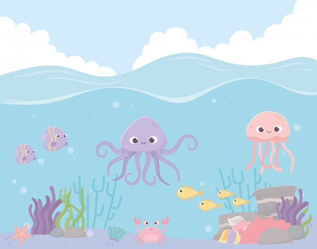 Polpo meduse pesci corallo granchio corallo sotto l'illustrazione vettoriale mare