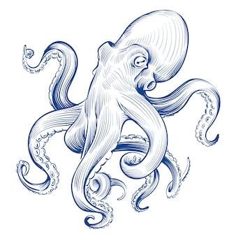 Polpo vintage animale dell'oceano inciso calamari disegnati a mano. illustrazione di polpo acquaforte