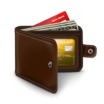 Portafoglio aperto in pelle con banconote in carta di credito