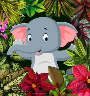 Posa carina dell'elefante bambino nella foresta