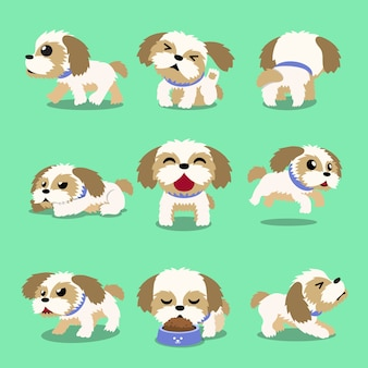 Pose del cane di tzu di shih del personaggio dei cartoni animati