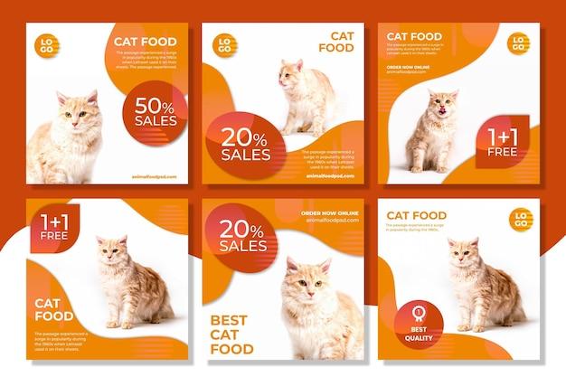 Post di instagram di cibo per animali