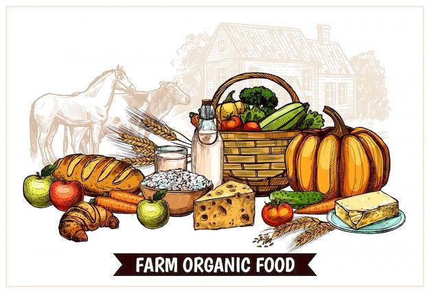 Poster di fattoria ecologica