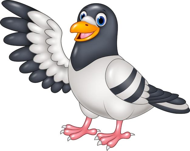 Presentazione divertente dell'uccello del piccione del fumetto