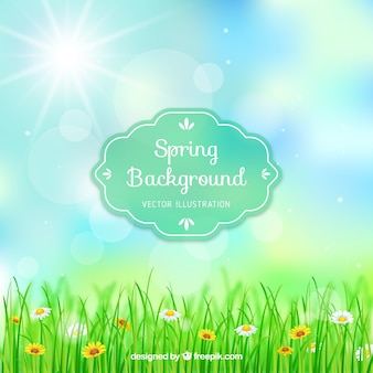 Primavera sfondo