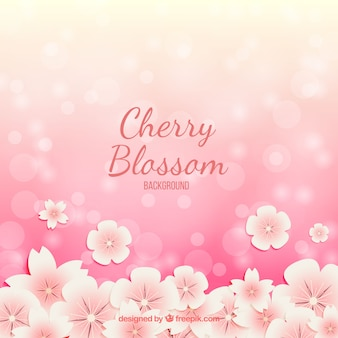 Priorità bassa del fiore di ciliegia con effetto bokeh
