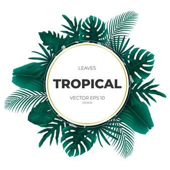 Priorità bassa del modello di foglie tropicali di estate.