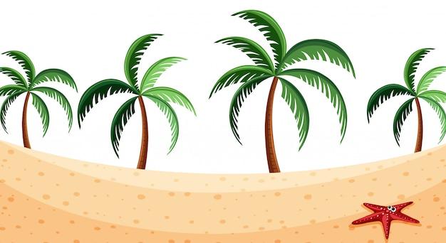 Priorità bassa del paesaggio con i cocchi sulla spiaggia