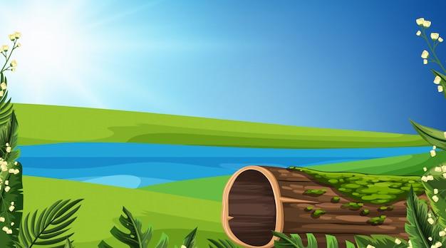 Priorità bassa del paesaggio del fiume e dell'erba verde