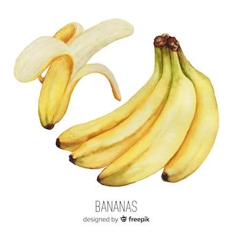 Priorità bassa della banana realistico dell'acquerello