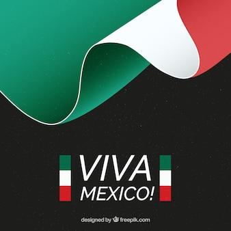 Priorità bassa della bandierina messicana con il testo di viva mexico