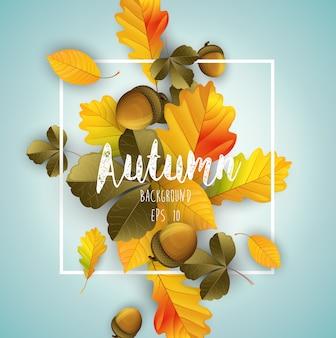 Priorità bassa di autunno con foglie secche e noci
