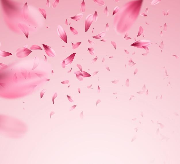 Priorità bassa di caduta dei petali di sakura rosa.