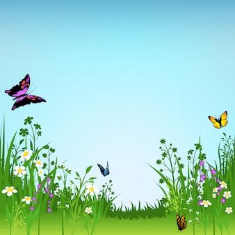 Priorità bassa di fioritura delle farfalle e del prato