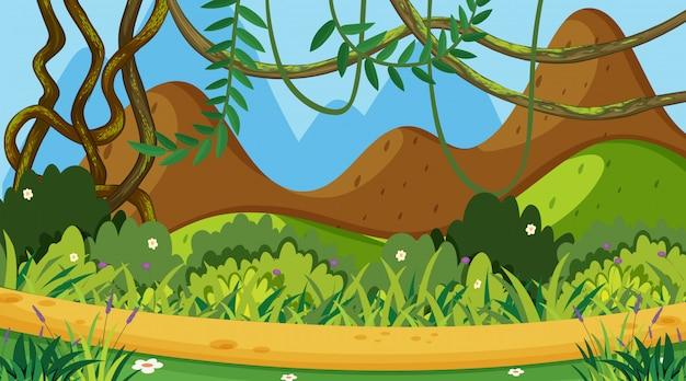Priorità bassa di paesaggio con erba verde sulla montagna