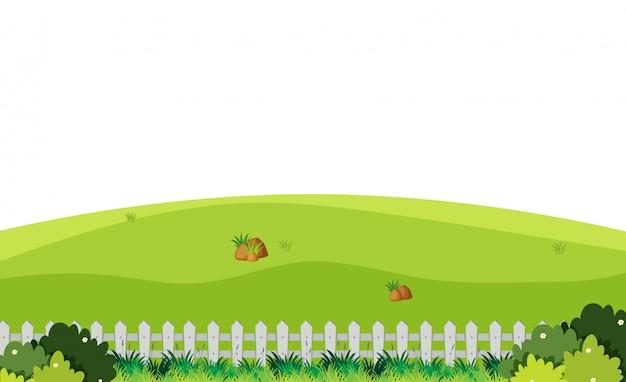 Priorità bassa di paesaggio del campo verde con la rete fissa bianca