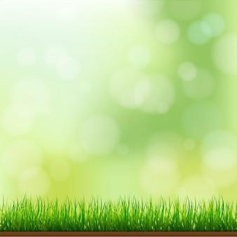 Priorità bassa naturale dell'erba verde con il fuoco e il bokeh