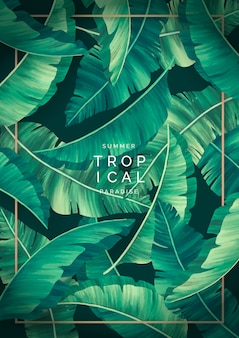 Priorità bassa tropicale moderna con cornice dorata