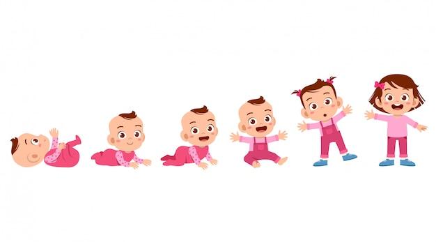 Processo del ciclo di crescita del bambino