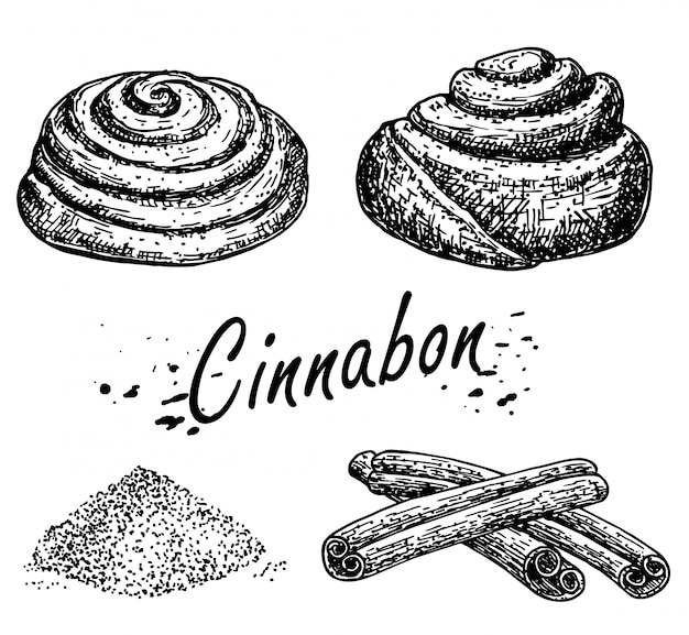 Prodotti da forno. schizzo di rotolo di cannella. panino al cinabro. schizzo disegnato a mano di rotolo di cannella dolce. pagnotta di pane. bastoncini di cannella.