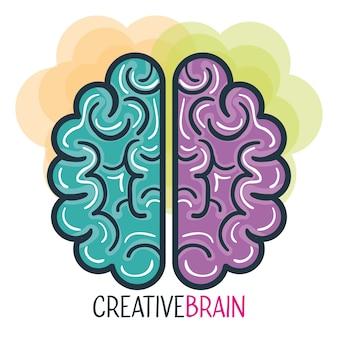 Profilo creativo e progettazione dell'illustrazione di vettore del cervello