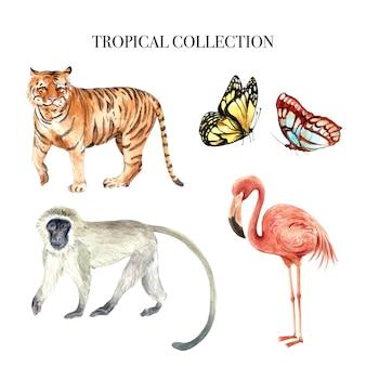 Progettazione dell'acquerello dell'elemento con l'illustrazione degli animali selvatici per uso decorativo.