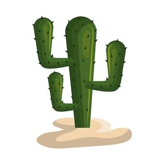 Progettazione dell'illustrazione di vettore dell'icona della pianta messicana del cactus