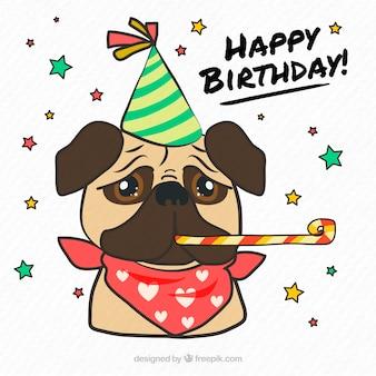 Pug classico con accessori di compleanno
