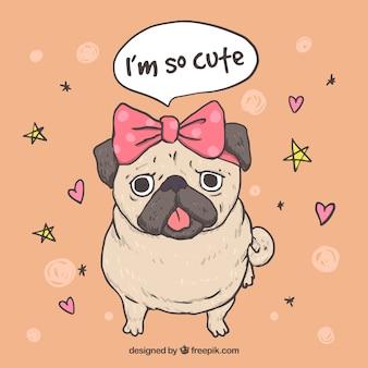 Pug femminile con stile bello