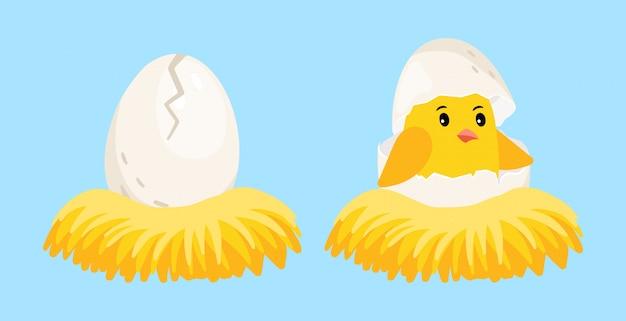 Pulcino appena nato. uovo del fumetto e pulcino covato con il guscio d'uovo sulla testa nell'illustrazione di vettore del nido