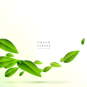 Pulisca il fondo volante delle foglie verdi