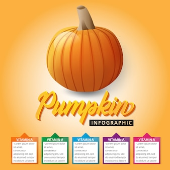 Pumpkin infographic for education