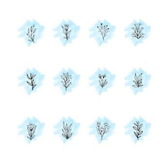 Punti culminanti di storie floreali disegnate a mano di instagram