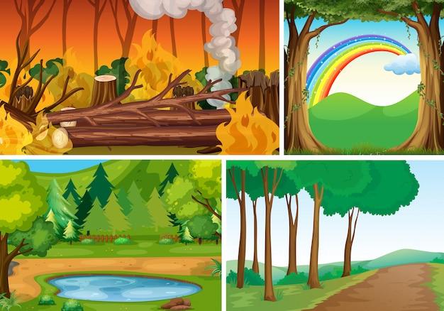 Quattro diverse scene di catastrofi di natura in stile cartone animato foresta