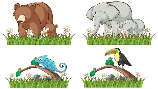 Quattro tipi di animali nel giardino