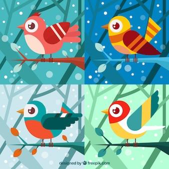 Quattro uccelli invernali colorati in design piatto