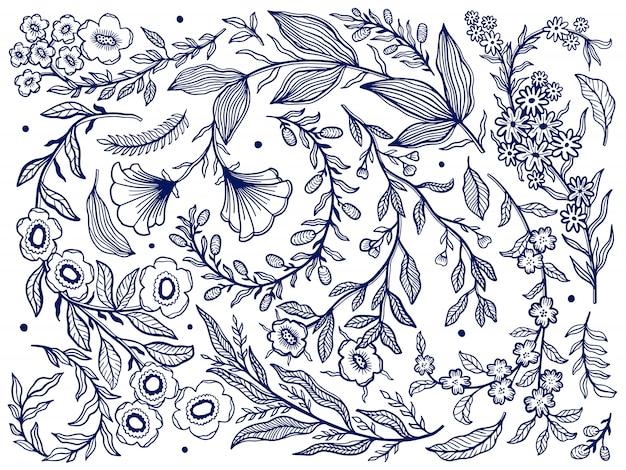 Raccolta astratta della natura disegnata a mano.