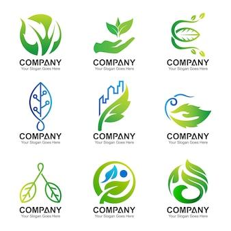 Raccolta del logo foglia insieme