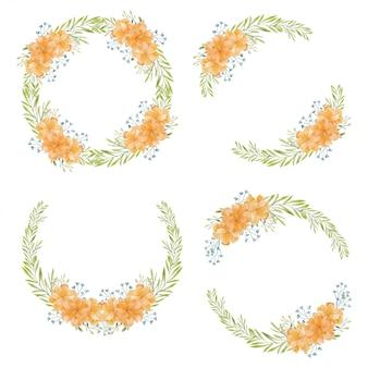 Raccolta della corona del cerchio del fiore del tagete dell'acquerello