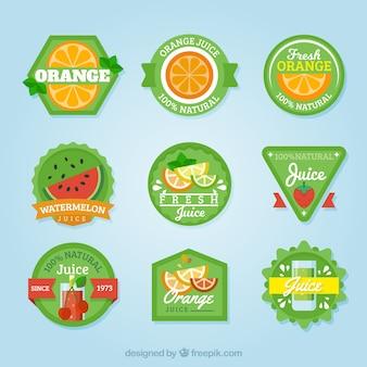 Raccolta di adesivi verdi con frutti piatti