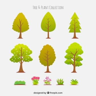 Raccolta di alberi con piante e fiori