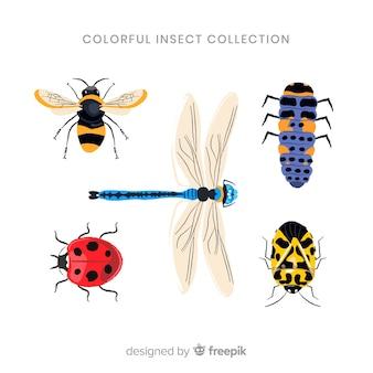 Raccolta di bug colorato realistico