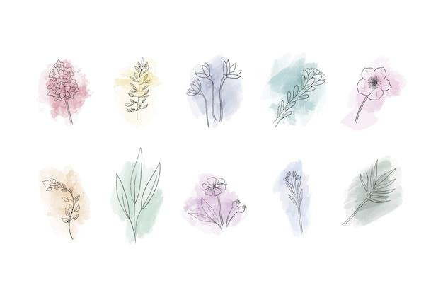 Raccolta di fiori disegnati a mano su macchie di acquerello
