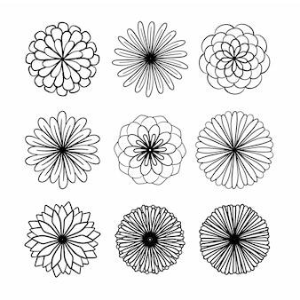 Raccolta di fiori disegnati a mano